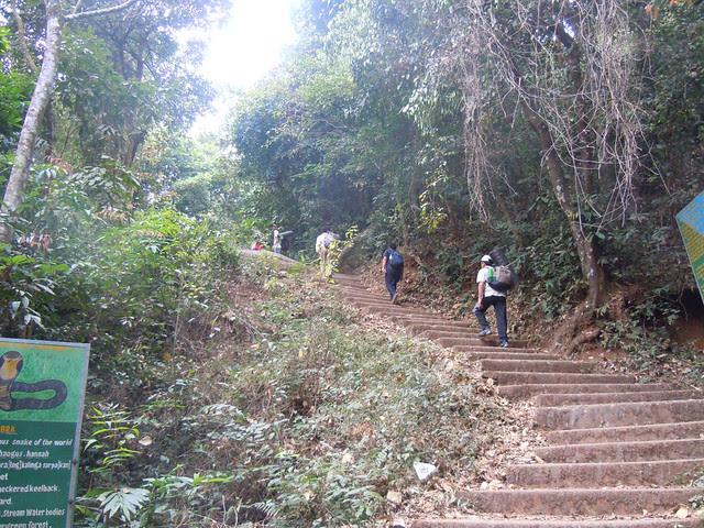 Brahmagiri_Trek_Steps