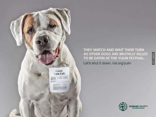 吃狗肉就是不道德?