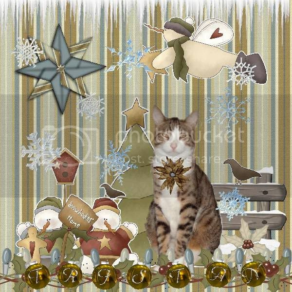 Holly Daze,Snowmen,Tabby Cat,Domestic Cat,Sir Tristan,Happy Holidays