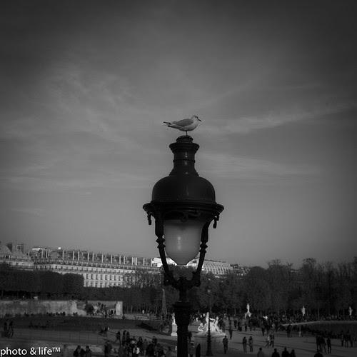 22101126 by Jean-Fabien - photo & life™