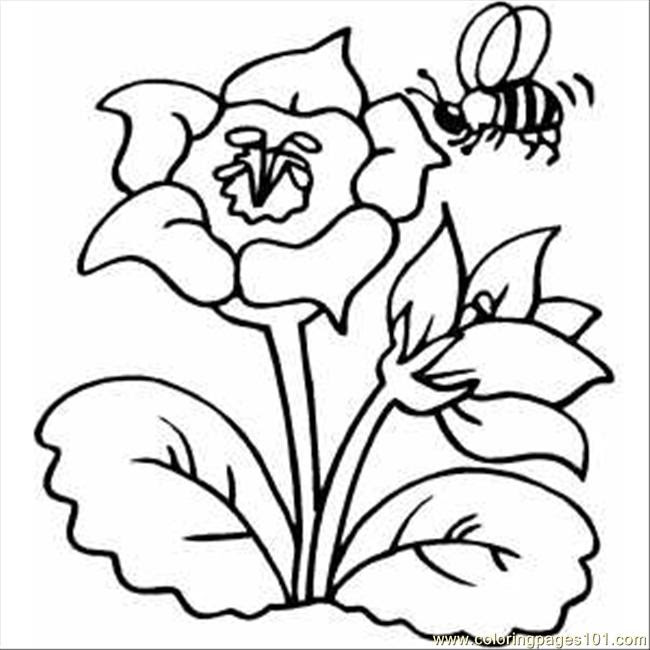 Flower With Bee Coloring Page Free Flowers Coloring Pages