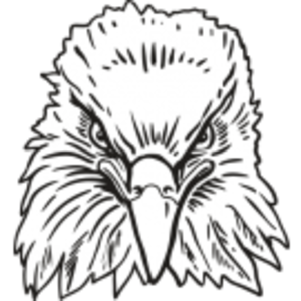 Eagle Free Images At Clkercom Vector Clip Art Online Royalty