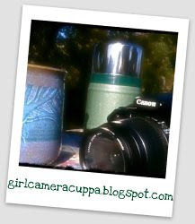 New!! My Photo Blog