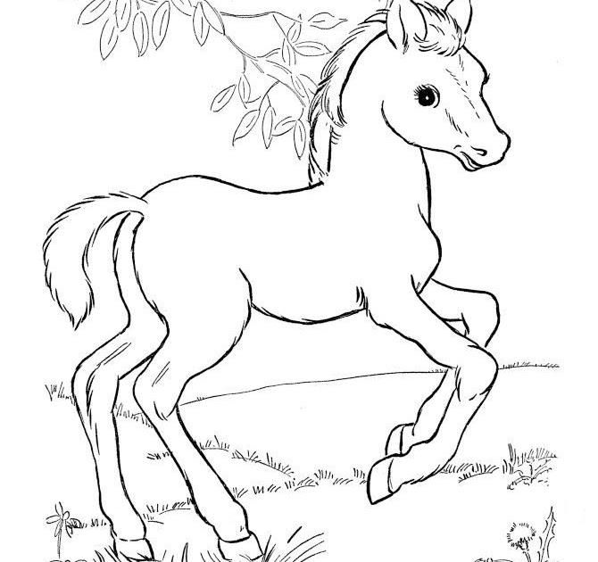 ausmalbilder von pferden  ausmalbilder
