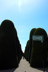 Punta Arenas, cementerio de cine