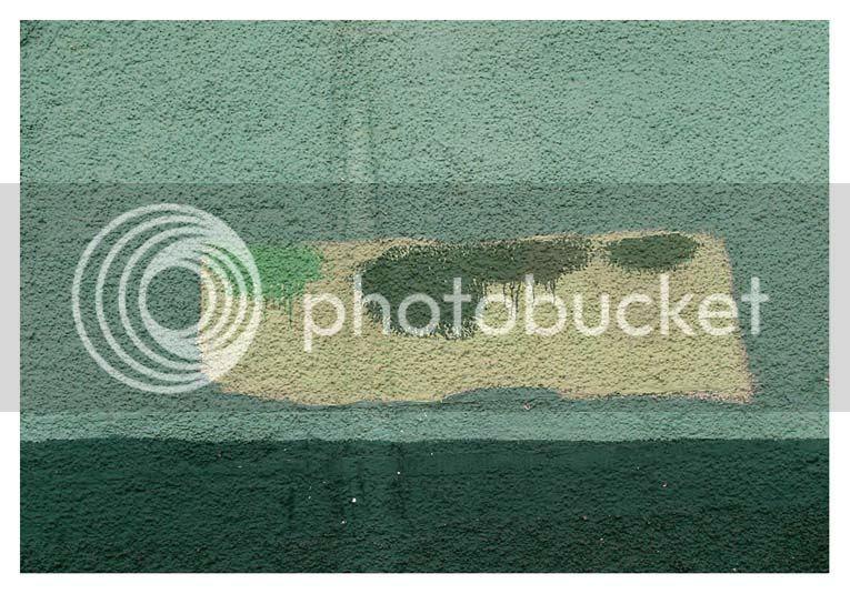 photo censuraenverde.jpg