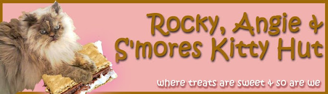 Rocky, Angie, and Smores Kitty Hut