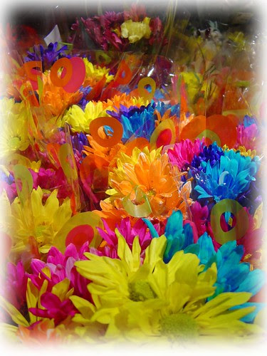 colorful flowers by sibhusky2.