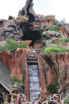 Magic Kingdom: Splash Mountain