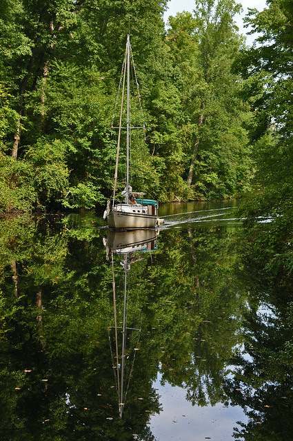 The Dismal Swamp Canal 3