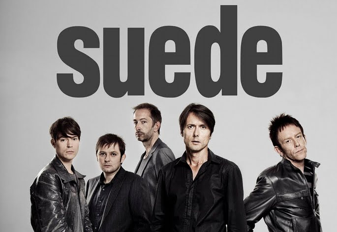 Image result for suede band