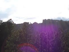 purplerushmore