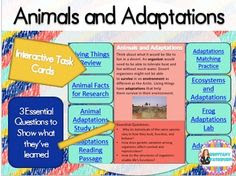 Animals and Adaptations interactive task cards. $