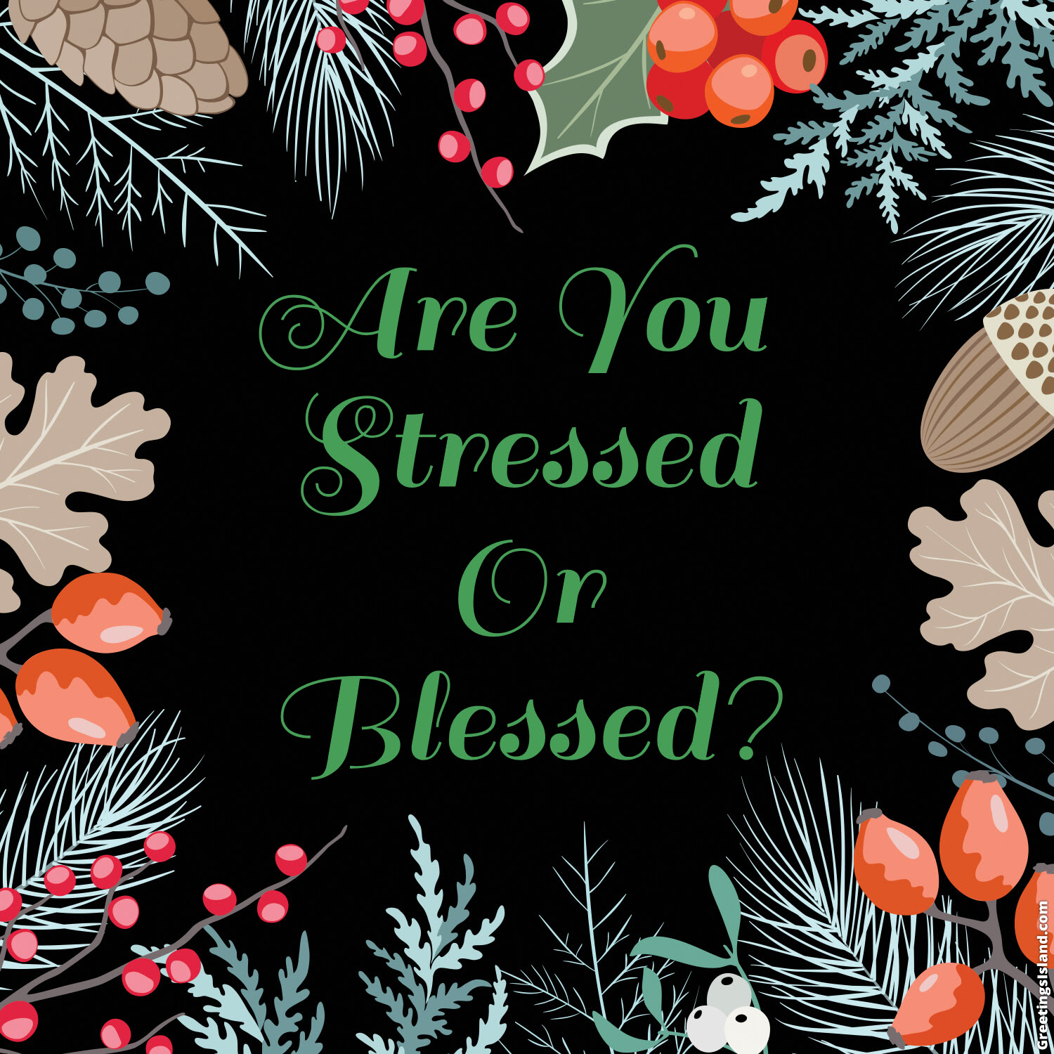 Are You Stressed Or Blessed The Everyday Homemaker