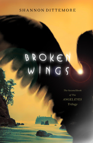 Broken Wings (Angel Eyes Trilogy, #2)