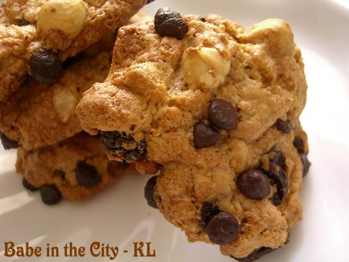 Chocolate & Raisin Oatmeal Cookies - closeup