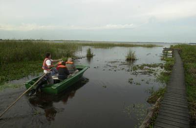 Paseo embarcado en los Esteros del Iberá