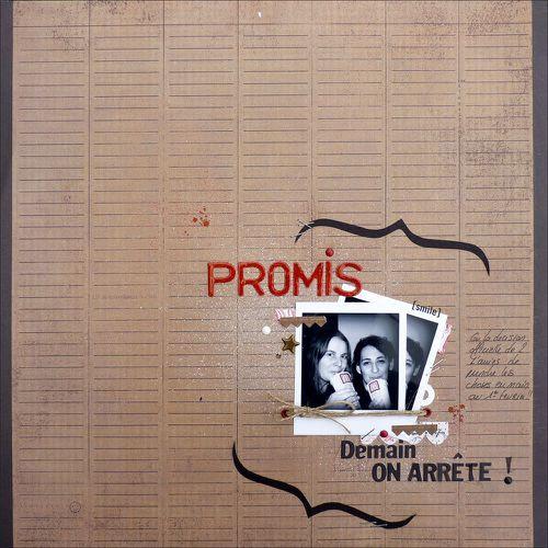 2011-01-31 promis