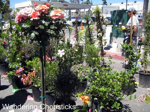 Farmers' Market - Claremont 10