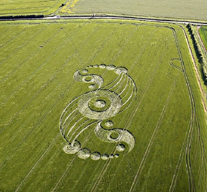 The World's Coolest And Real Crop Circles