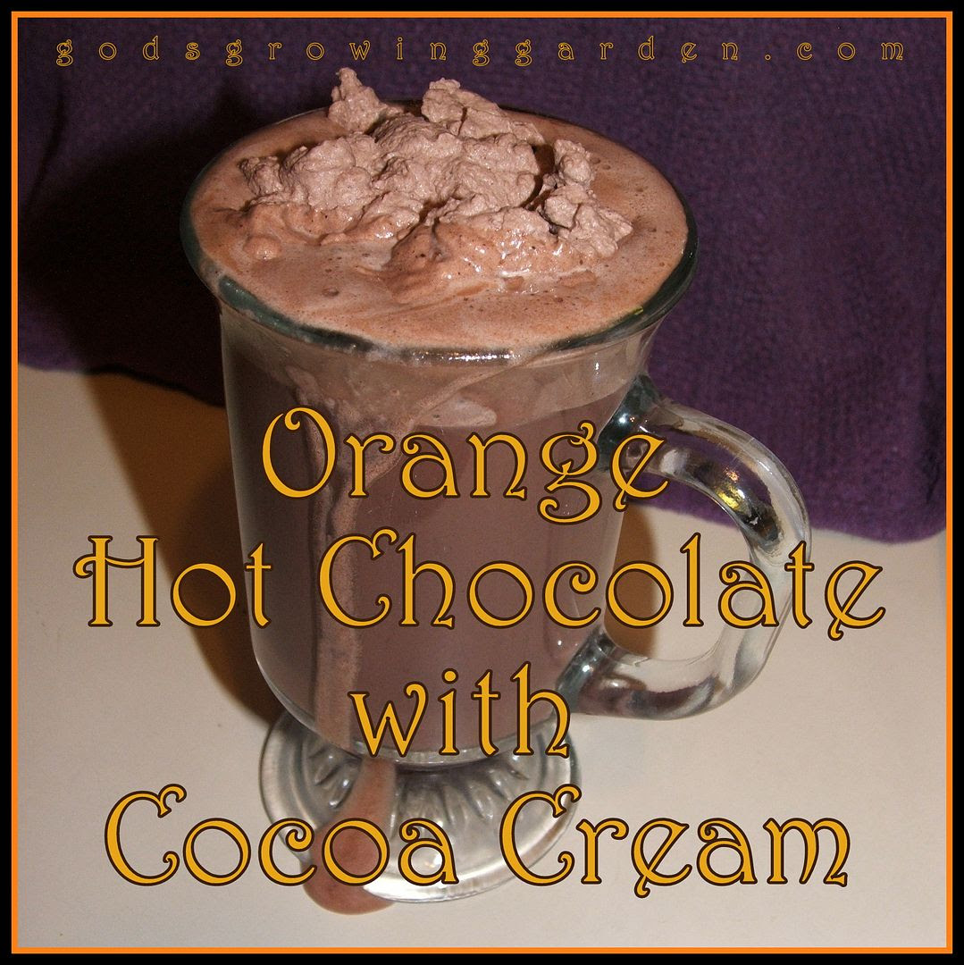 Orange Hot Chocolate by Angie Ouellette-Tower for godsgrowinggarden.com photo 011_zps41d38535.jpg