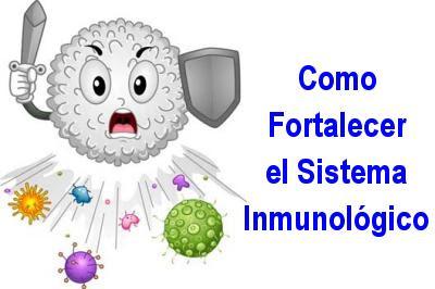 Resultado de imagen para Tratamientos y remedios caseros para reforzar el sistema inmunológico