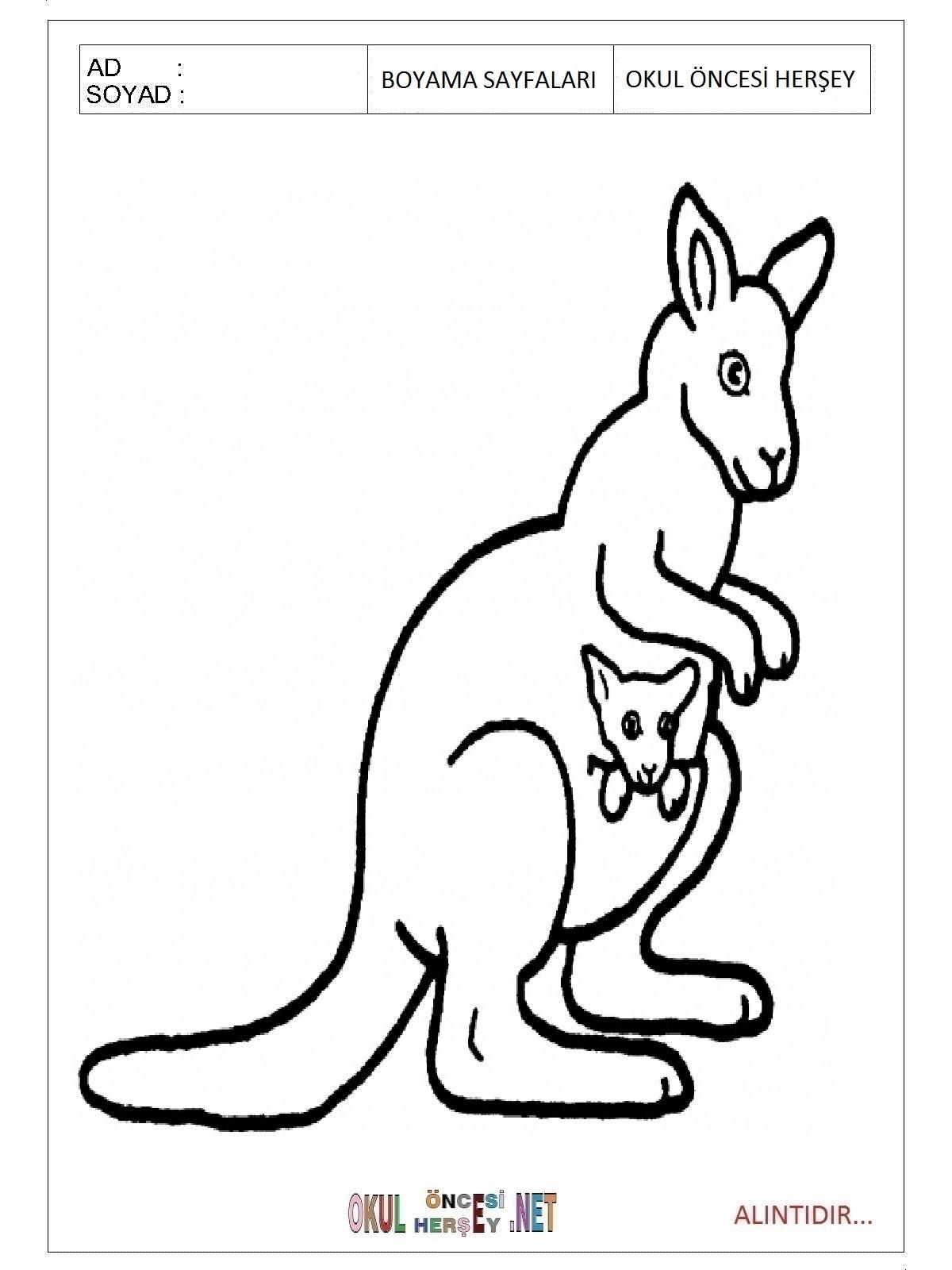 Kanguru Boyama Sayfaları