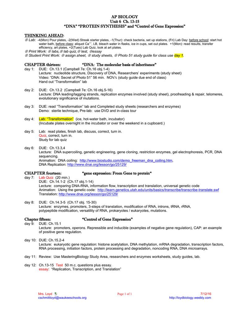 27 Dna Unit Review Worksheet Answer Key - Worksheet ...