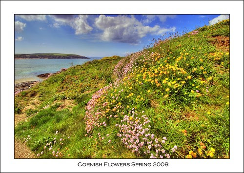 Harlyn Bay Coastal Path, Cornwall