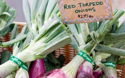 13 Secrets Farmers' Markets Won't Tell Yo