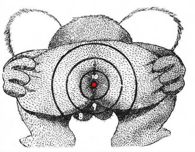 1000+ images about printable targets on Pinterest | Pistols, Deer ...