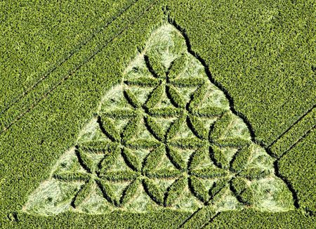 http://www.zakayglasscreations.com/product_images/uploaded_images/flower-of-life-crop-circle-2012.jpg