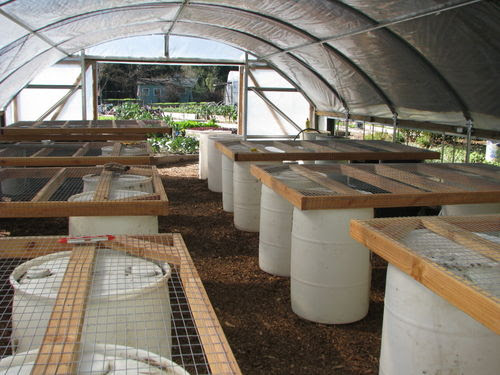 Love Apple Farms: Manure Compost as Passive Greenhouse Heating