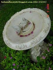 bc - garden06 birdbath