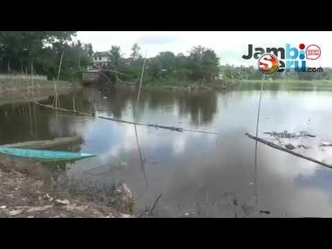 Video Wisata Danau Sipin Jambi Diwarnai Sampah dan Bau Tak Sedap