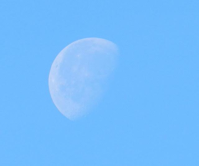 skywatchDSCN9323