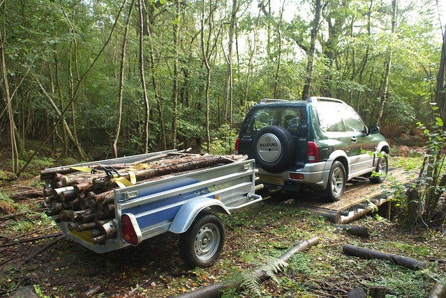 DSC_4536 Moving logs over the woodland bridge