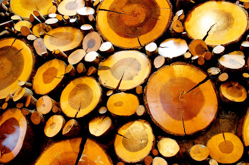 May 25: Wood Wall Art