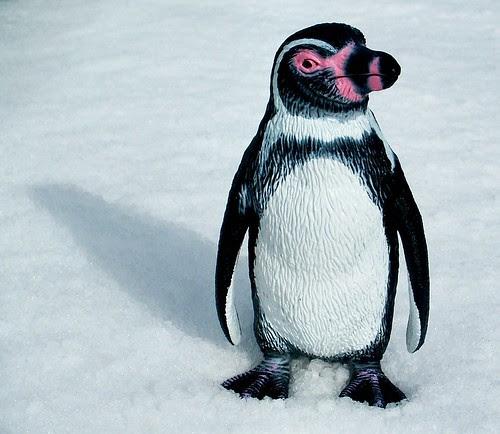 Effect of Google Penguin Updates on SEO
