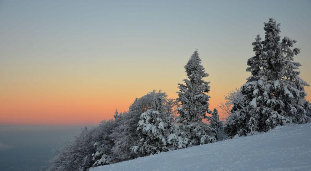 winter-am-gaisberg-24