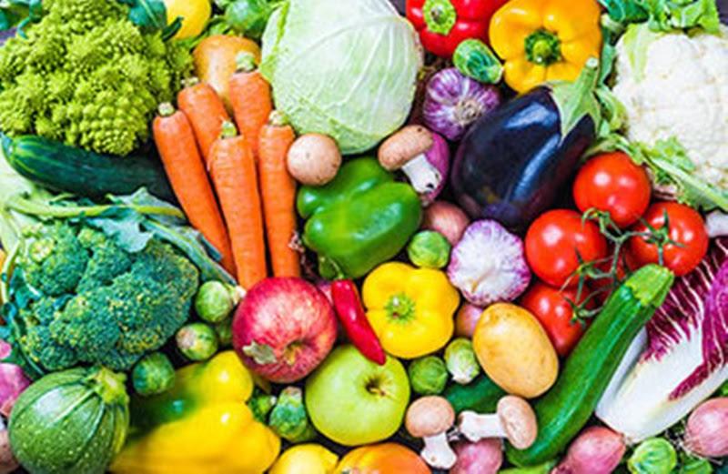Business model selling vegetables and fruits online ऑनलाईन भाजीपाला आणि फळे विक्री बिझनेस मॉडेल