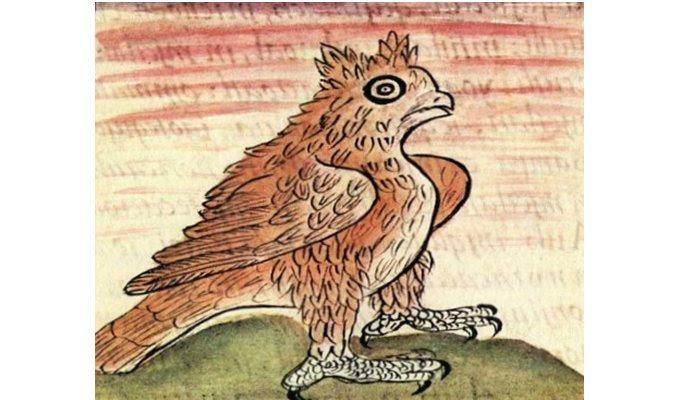 Owl Aztec Symbol