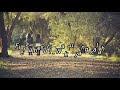 Fiersa besari feat thantri Waktu yang salah Lirik Chord YouTube