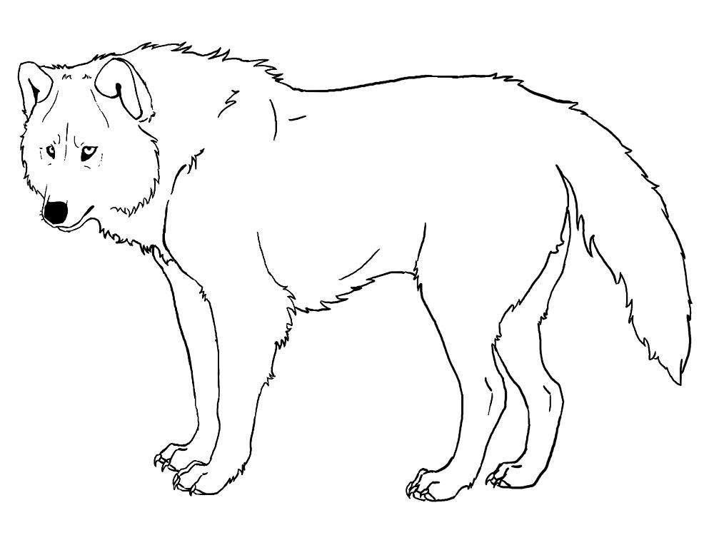 Lobos Descargar Gratis Dibujos Para Colorear