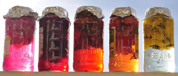 hibiscus juice, red onion juice, dahlia juice, lily juice, aster juice