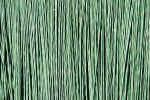 texture-green-t8w.jpg (214055 Byte)