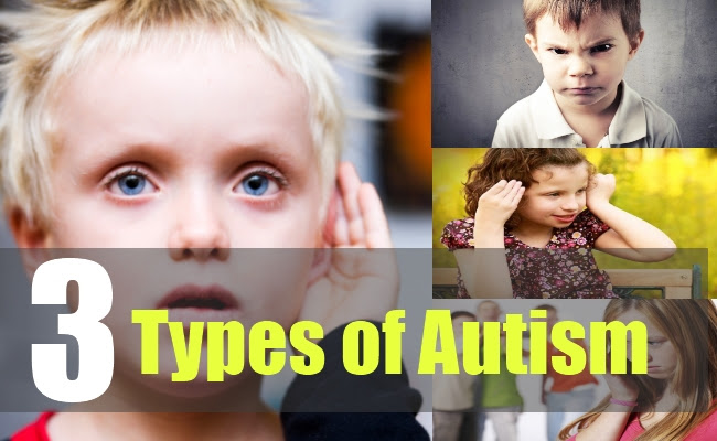 Image result for types of autism