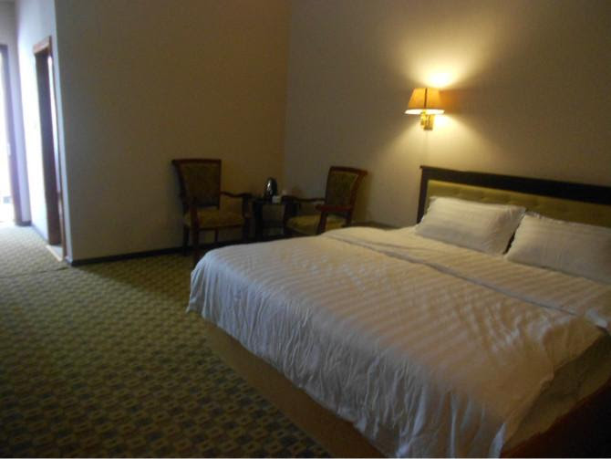 Review Shangri-la Ziyouxing Hotel