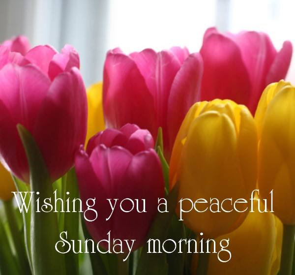 Good Morning Wishes On Sunday Pictures, Images  Page 2