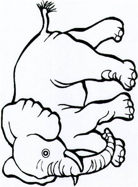 continents coloring page clipart panda  clipart images